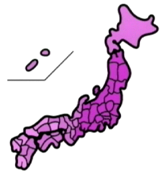 touhyouchn0273.png
