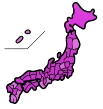 touhyouchn0295.png